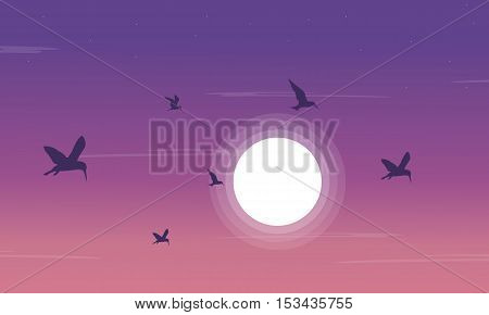 Silhouette of birdsea and moon scnery vector illustration