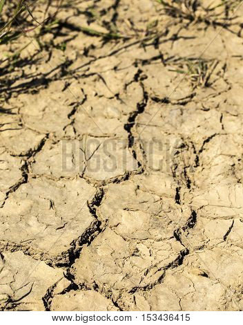 Very dry land without any rain to provide moisture.