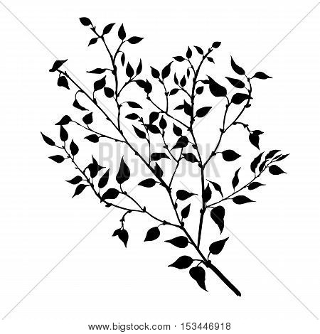 tree branches with leaves and berries, fruit trees twig, isolated hand drawn vector element