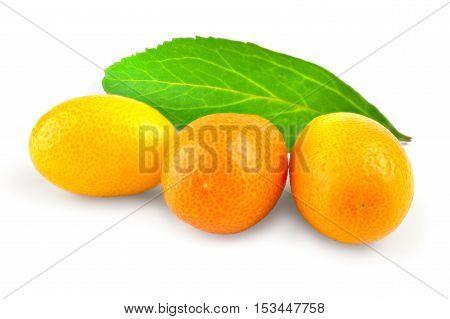 Kumquat citrus on a white background cutout.