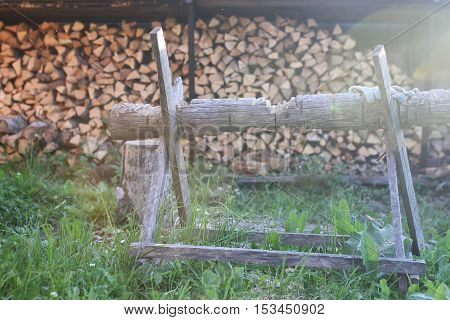 cut pine wood in the woodpile for stone oven