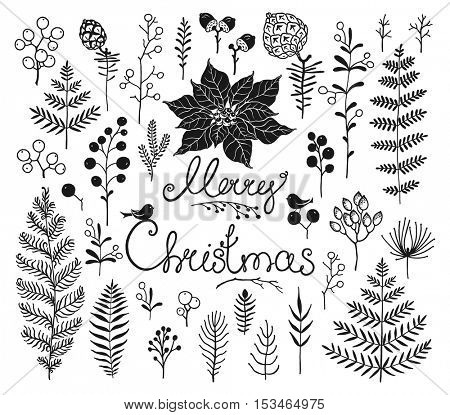 Collection design elements with silhouettes branches, leaves, pine cones, berries, flower Poinsettia, acorn and birds. Doodle illustration for Christmas and New Year. Vector floral design.