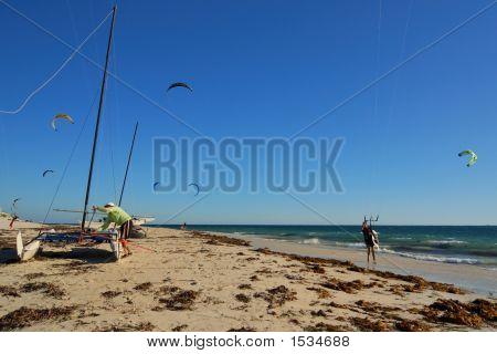 Swarm Of Kite Surfers