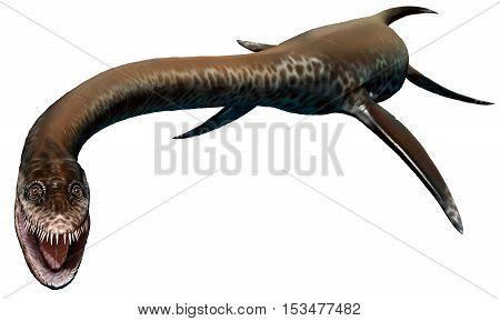 Styxosaurus from the cretaceous era 3D illustration