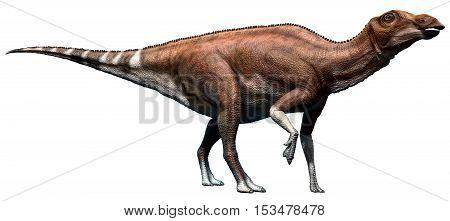 Brachylophosaurus from the Cretaceous era 3D illustration