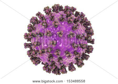 Parainfluenza virus isolated on white background, 3D illustration. Common cold virus. Paramyxovirus. Illustration shows structure of parainfluenza virus with surface glycoprotein spikes
