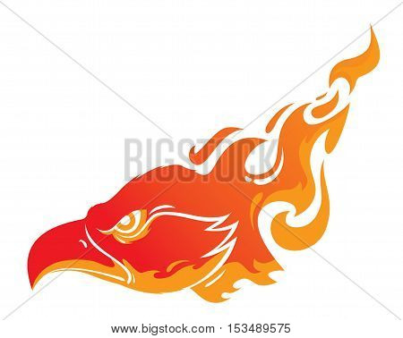 head of a Phoenix in flames tattoo vector