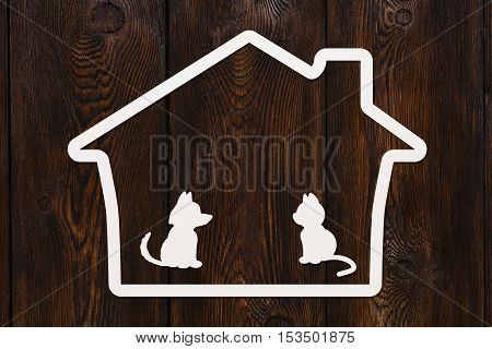 Paper house with dog, cat inside. Animals, pet abstract concept. Dark wooden background. Abstract conceptual image