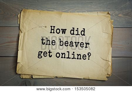Traditional riddle. How did the beaver get online?( He logged on.)