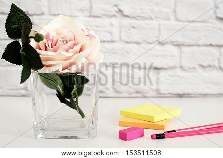 Hot Pink Styled Desktop. Garden Roses Styled Stock Photography. Product Mockup, Graphic Design. Rose