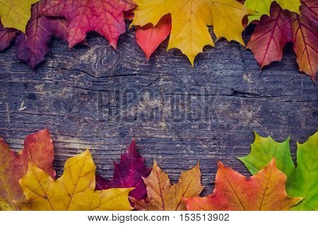Autumn background with colorful fall maple leaves on rustic wooden table with place for text. Thanksgiving autumn holidays background concept. Frame with autumn leaves. Copy space. Top view.