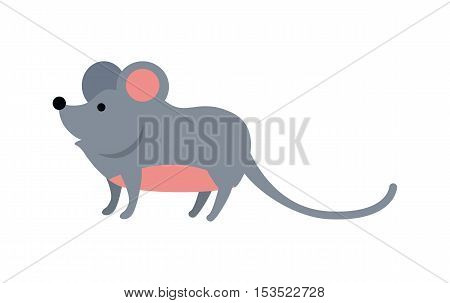 Funny mouse isolated on white background. Gray mouse with pink ears and belly. Animal adorable mouse vector character. Charming humorous mouse. Wildlife character poster