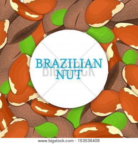 Round colored frame composed of brazilian nut. Vector card illustration. Circle Nuts frame, brazilnut fruit in the shell, whole, shelled, leaves appetizing looking for packaging design of healthy food
