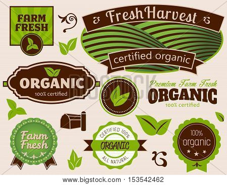 Organic Labels-Set of Organic Labels and Design Elements