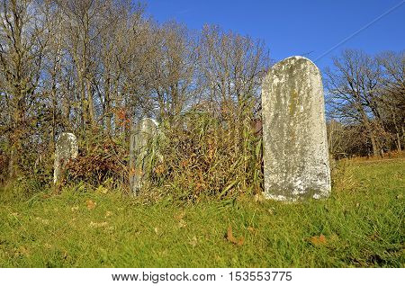 Old lombstones partially hidden by long grass and weeds in an uncared for cemetery