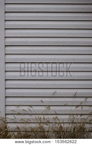 Siding, plastic panels texture closeup in the daytime outdoors