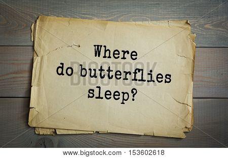 Traditional riddle. Where do butterflies sleep?( On Caterpillows! )