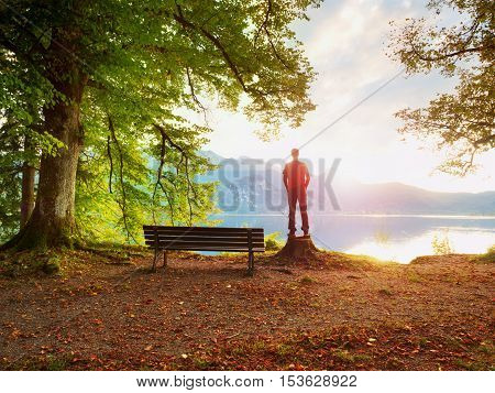 Man In Red Jacket And Black Trousers Stand On Tree Stump. Empty Wooden Bench At Mountain Lake.