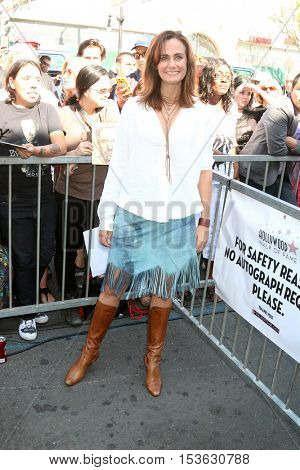LOS ANGELES - OCT 25:  Diane Farr at the Hugh LaurieHollywood Walk of Fame Star Ceremony at the Hollywood Blvd. on October 25, 2016 in Los Angeles, CA
