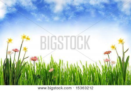 Frühlings-Landschaft