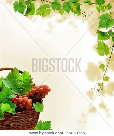 Background design with grapes in basket and fresh grapevine decoration