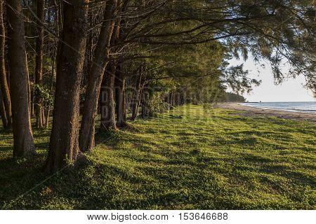 LABUAN ISLAND , MALAYSIA - OCTOBER 23,2016: Nature green scenery while waiting the sunset at Pohon Batu seaside.