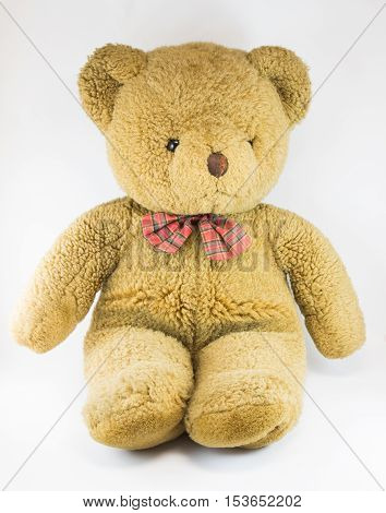Cute Little Teddy Bear with white background
