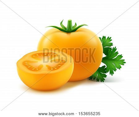 Vector Big Ripe Yellow Fresh Cut Whole Tomatoes with parsley Close up Isolated on White Background