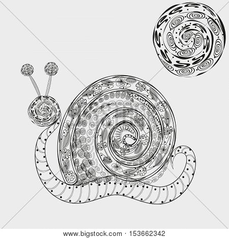 Big snail graphic image Black and white drawing handmade shell molluscs abstract pattern flower, leaf, swirl, shell, insect sun ornament gray background eps10 vector illustration Stock