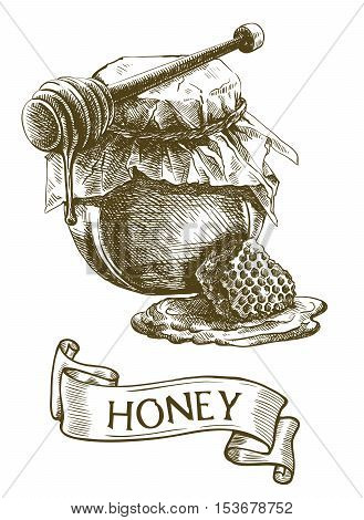 Honey jar, wooden dipper stick and honeycomb . Vector sketch on a white background