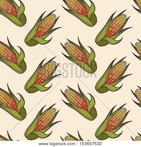 Hand drawn corn cob seamless pattern. Organic food background. Vector illustration