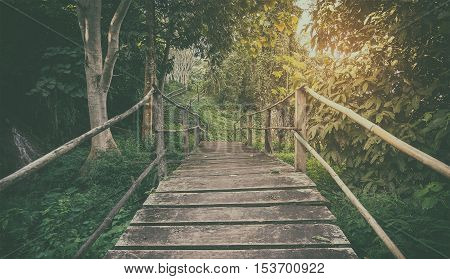 Forest hiking path wooden bridge in vintage flair background