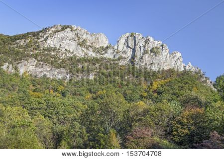The peaks of Seneca Rocks a ridge of Tuscarora quartzite rise above Pendleton County West Virginia.