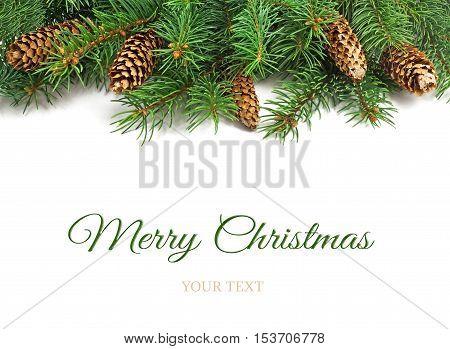 Christmas Tree Borders