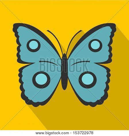 Butterfly with circles on wings icon. Flat illustration of butterfly with circles on wings vector icon for web