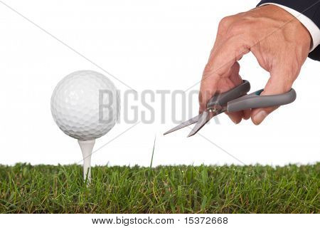 golf ball green.metaphor for service and perfection