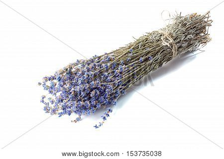 Bundle of lavander isolated on white background