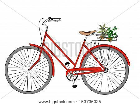A detailed illustration of a red bicycle with a basket holding herbs