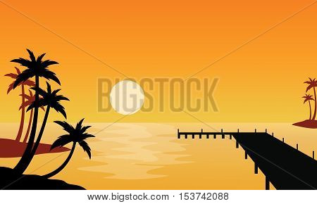Silhouette of clump palm on seaside at sunset
