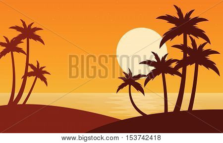 Silhouette of two clum palm on seaside scenery