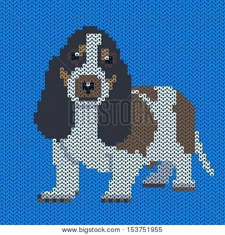 Vector knitted dog pattern. Basset on blue background. Illustration for sweater, pullover, slip-over, wooly, bag, satchel, carrier bag.