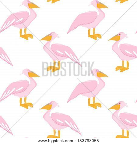 Pelican seamless pattern. Pelican bird isolated on white background. Vector illustration