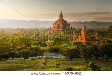 Pagoda landscape in the plain of Bagan Myanmar (Burma)