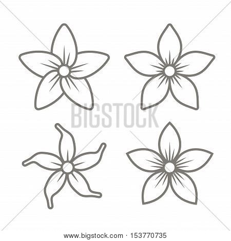 Jasmine Flower Icons Set on White Background. Vector Illustration