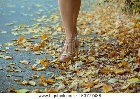 Legs of a young girl in beige sandals with heels which is on the road strewn with yellow leaves