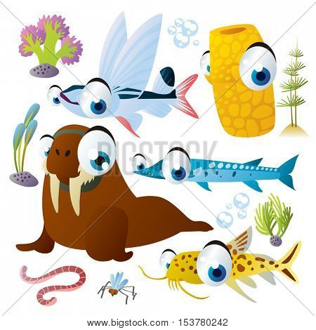 cute vector flat style illustration of sea life animals and fish. Funny collection set of walrus, sponge, flying fish, catfish, barracuda