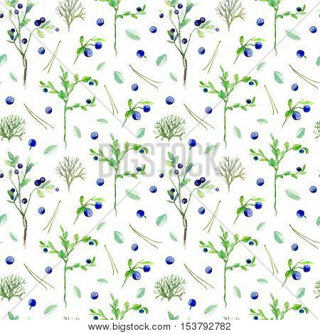 Berry seamless pattern.Blueberry,moss,pine needle and leaves.Watercolor hand drawn illustration.White background.