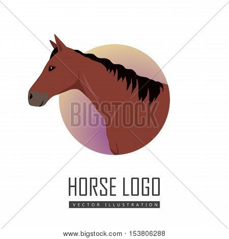 Sorrel horse logo vector. Flat design. Domestic animal. Country inhabitants concept. For farming, animal husbandry, horse sport illustrating. Agricultural species. Isolated on white