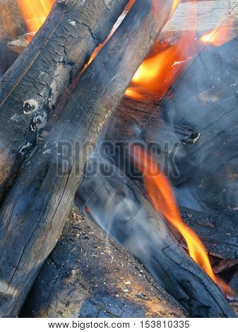 Logs lit on fire for a toasty campfire