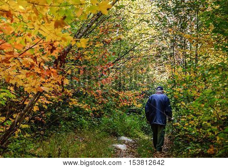 Autumn fairy with senior walking in forest of Quebec Canada